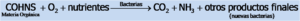 Formula_1-Fisicoquimicos_EDAR.