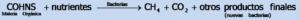 Formula_2-Fisicoquimicos_EDAR.